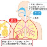 新型肺炎への恐怖が不要、注意すべき所は注意を払え!
